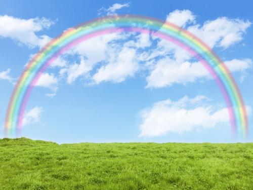 草原に架かる虹