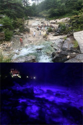 西の河原公園(昼と夜)