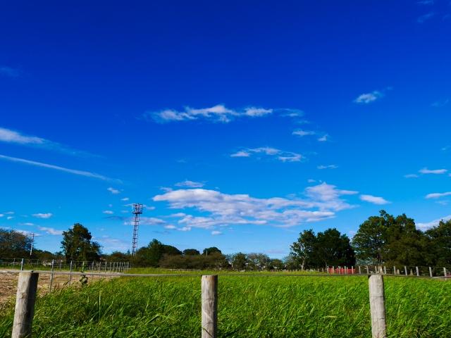 田舎の青空(大)